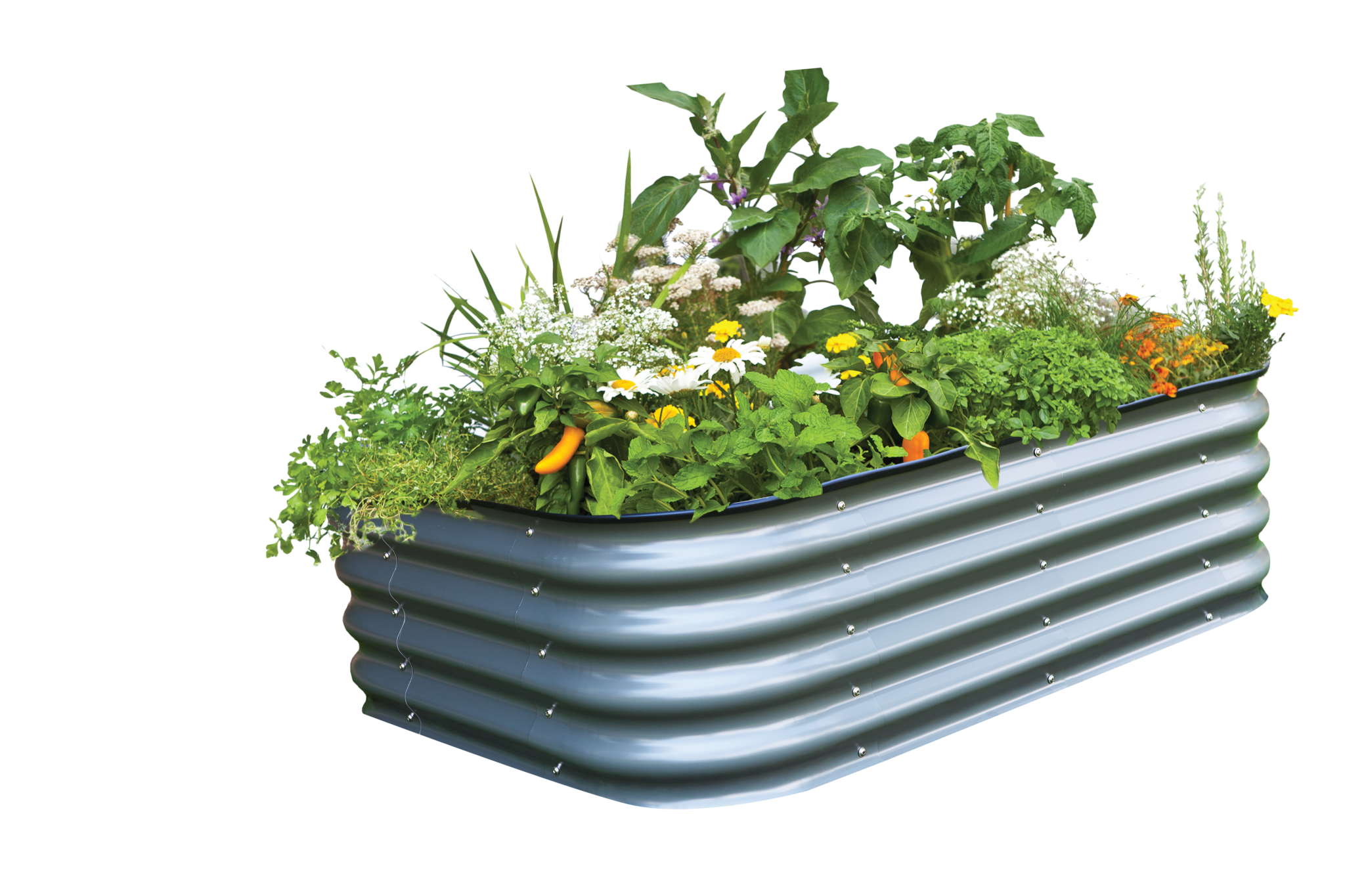 Small_raised_garden_bed_kit