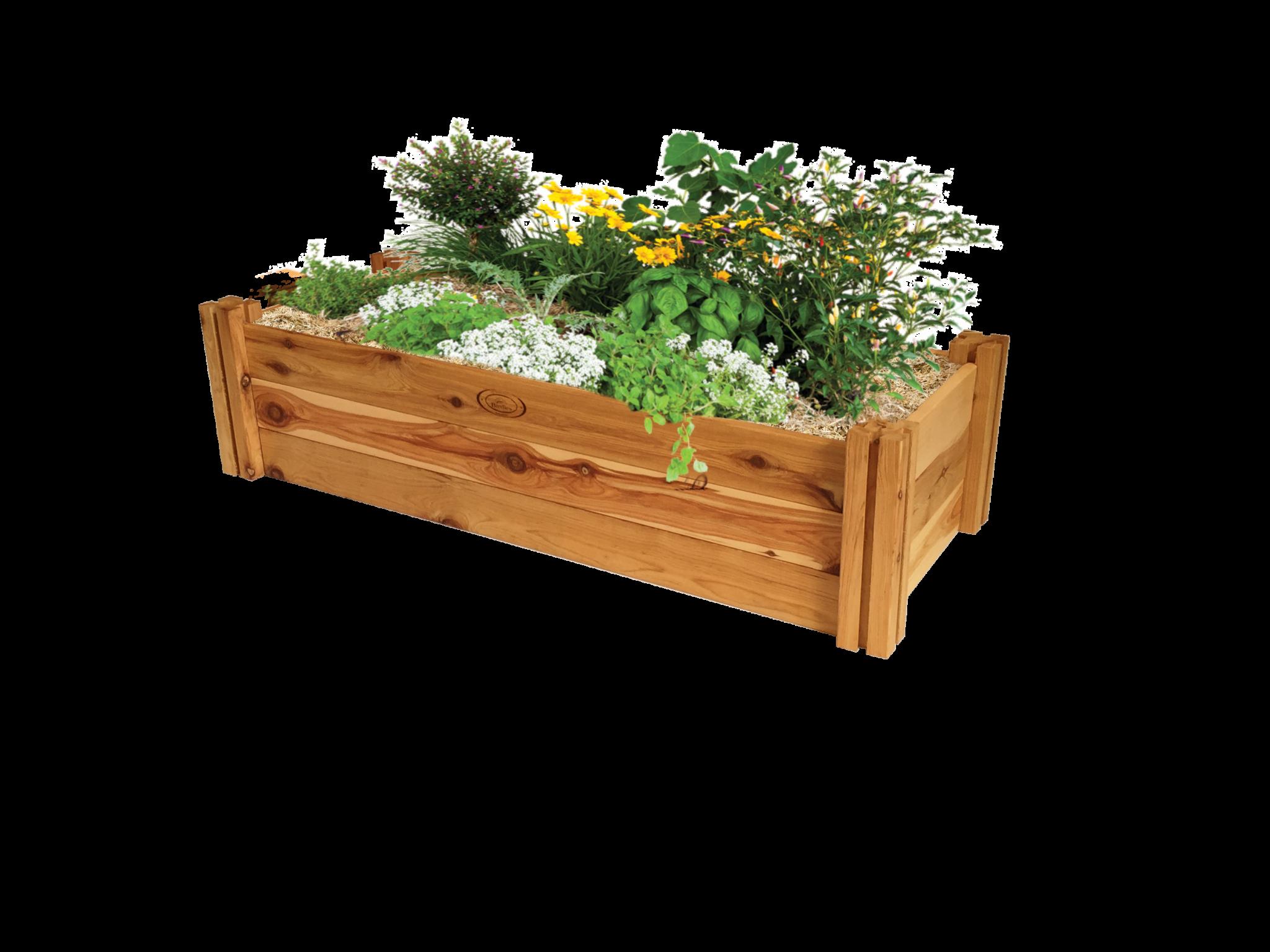rectangular planter birdies garden productsbirdies garden products - Garden Bed