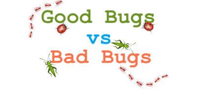 good bugs vs bad bugs