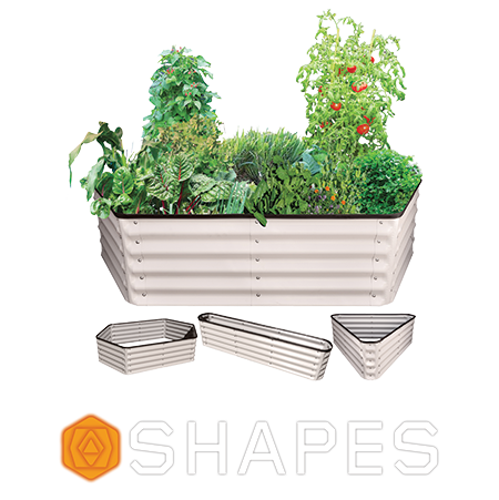 Shapes Range